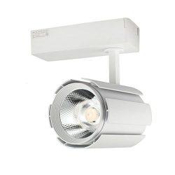GALYGG LED Track Lighting Heads Spotlight,30W Super Bright COB Light Source,3000LM 3000K Warm Wh ...