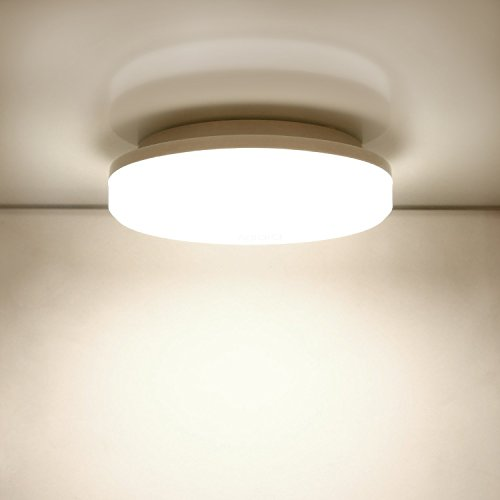 Aglaia LED Flush Mount Ceiling Light, 12-Inch 24W, 3000k Warm White ...
