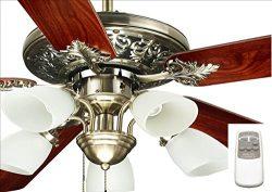 Ocean Lamp OL52016-C Immaculate Decorative Ceiling Fan W/Light& Remote Control