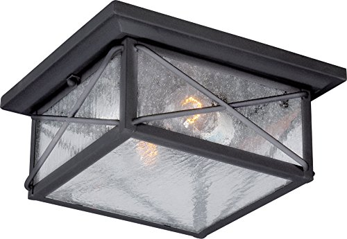 Nuvo Lighting 60 5626 Wingate Flush 2 Light 60 Watt A19