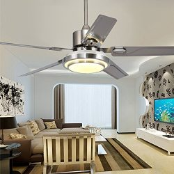 Andersonlight Stainless Steel Ceiling Fan for Modern Living Room Iron Leaves Remote Control Dimm ...
