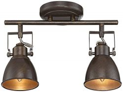 Pro Track Abby 2-Light Bronze Track Fixture