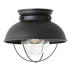 Sea Gull Lighting 8869-12 Sebring One-Light Outdoor Flush Mount Ceiling Light with Clear Seeded  ...