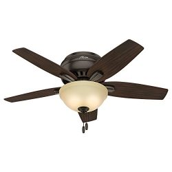 Hunter 51081 Newsome Ceiling Fan with Light, 42″/Small, Premier Bronze