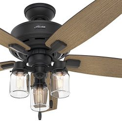 Hunter Fan 52 in. Rustic Ceiling Fan with Clear Glass LED Light Kit, Natural Iron Finish (Certif ...