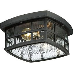 Bidwell Lighting Hazel 12″ Wide Outdoor Ceiling Light – Mystic Black