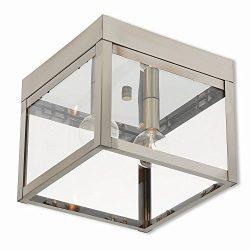 Livex Lighting 20588-91 Nyack 2 Light Outdoor Ceiling Mount 2, Brushed Nickel
