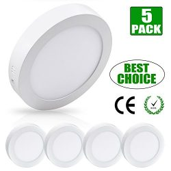 W-LITE 4.72 Inch Flush Mount LED Ceiling Light 6W Round Surface Panel Wall Lamp5000K/Daylight Wh ...