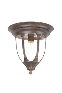 Acclaim 5063BC Suffolk Collection 1-Light Ceiling Mount Outdoor Fixture, Black Coral