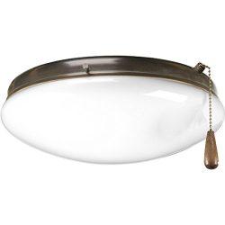 Progress Lighting P2602-20 Two-Light Universal Fan Light Kit