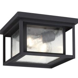 Seagull Lighting 78027-12 Two Light Outdoor Ceiling Flush Mount, Black