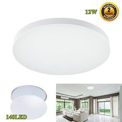 LED Flush Mount Ceiling Light,S&G Professional 100W Incandescent Bulbs Equivalent Slimline L ...