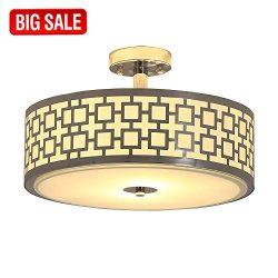 SOTTAE Luxurious Chrome Finish 2 Lights Glass Diffuser Living Room Bedroom Ceiling Light,Ceiling ...