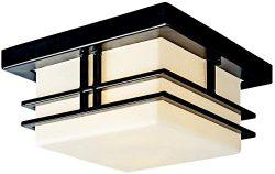 Kichler 49206BK Tremillo Outdoor Ceiling 2-Light, Black