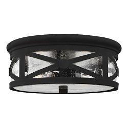 Sea Gull Lighting 7821402-12 Lakeview Two-Light Outdoor Flush Mount Ceiling Light with Clear See ...
