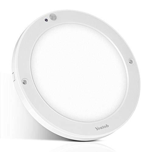 Basement Stair Lighting Pendant: Motion Sensing Indoor/Outdoor LED Ceiling Light, 100 Watt