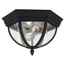 Sea Gull Lighting 78136-12 Wynfield Two Light Outdoor Ceiling Flush Mount, Black