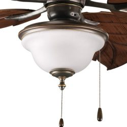 Progress Lighting P2636-20 2-Light Indoor/Outdoor Fan Light Kit with Frosted Seeded Glass, Antiq ...