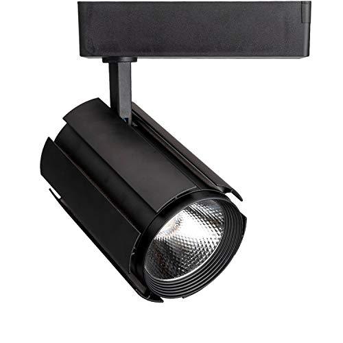 30w Led Track Lighting Fixtures: GALYGG LED Track Lighting Heads Black Spotlight, 3