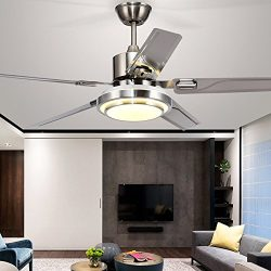 Andersonlight Brushed Steel Indoor Ceiling Fan, Light Kit with White Acrylic Glass and Remote (5 ...