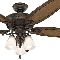 Hunter Fan 54 inch Traditional Ceiling Fan includes LED Light and Thick Carved-Wood Fan Blades ( ...