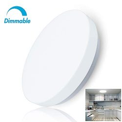 W-LITE 20W Dimmable Led Flush Mount Ceiling Lighting Fixture,Modern Round Close to Ceiling Light ...