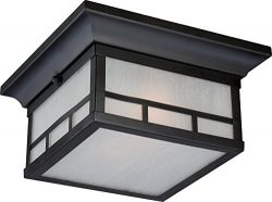 Nuvo Lighting 60/5606 Drexel Flush 2 Light 60-watt A19 Outdoor Close to Ceiling Porch and Patio  ...