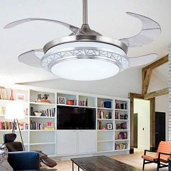 Lighting Groups Modern Acrylic Blades Cool Ceiling Fan Light Kit 42 Inch Invisible Energy-Saving ...