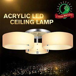 Ceiling Lights,Chandelier Ceiling Light Fixtures,Modern Flush Mount Light Fixture with 3 Bulbs,A ...