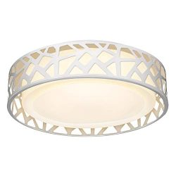 LED Flush Mount Ceiling Light, 14 Inch Dimmable Round Lighting Fixture, 20W 1400 Lumens 3000K Wa ...