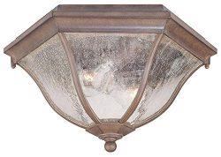Acclaim 5615ABZ Flush Mount Collection 2-Light Ceiling Mount Outdoor Light Fixture, Architectura ...
