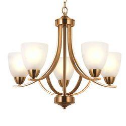 VINLUZ 5 Light Contemporary Chandeliers Brushed Brass Modern Ceiling Light Fixtures Classic Pend ...