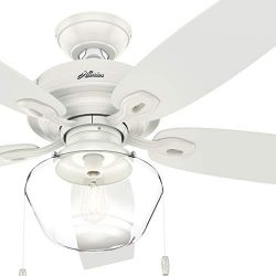Hunter Fan 52 inch Traditional Fresh White Damp Ceiling Fan with Light Kit (Renewed)