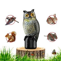 Premium Bird Repellent Fake Owl Decoy for Garden 16 in. Tall – Motion Activated & Solar Powe ...