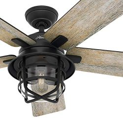 Hunter Fan 54 inch Casual Weathered Zinc Indoor Ceiling Fan with Light Kit and Remote Control (R ...