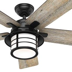 Hunter Fan 54 inch Casual Matte Black Indoor Ceiling Fan with Light Kit and Remote Control (Renewed)