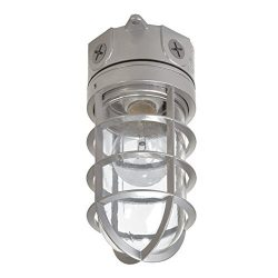 EATON Lighting VT100G 100W Vapor Tight Light