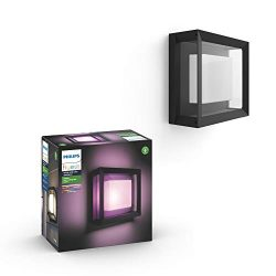 Philips Hue 1743830V7 White & Color Ambiance Econic Wall & Ceiling Fixture, Black