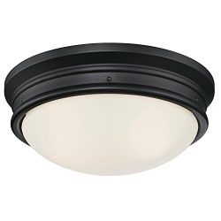 Westinghouse Lighting 6324100 Meadowbrook Two-Light Indoor Flush-Mount Ceiling Fixture, Matte Bl ...
