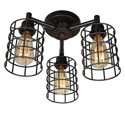 Baiwaiz Industrial Ceiling Lighting, Metal Wire Cage Semi Flush Mount Ceiling Light 3 Lights Edi ...