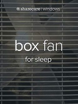 Box Fan for sleep (fast)