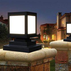 CapsA Solar Lights Bright Pathway Outdoor Garden Stake Glass Stainless Steel Waterproof Auto On/ ...