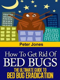 How to Get Rid of Bed Bugs – The Ultimate Guide to Bed Bug Eradication