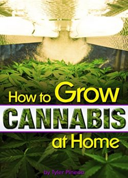 How to Grow Cannabis at Home: A Pot-Lover's Guide to Growing Cannabis Indoors for Self-Con ...