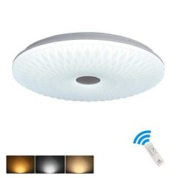 Remote Ceiling Light Close to Ceiling Lights Acrylic Ceiling Chandelier Lighting Fixture Flush M ...