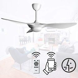 reiga 52-in Ceiling Fan with LED Light Kit Remote Control Modern Blades Noiseless Reversible Mot ...