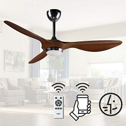 reiga 52″ WIFI Smart Ceiling Fan with LED Light Kit, Work with Alexa, Apps, Remote Control