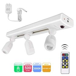 BIGLIGHT LED Track Light Kit, Dimmable Accent Lighting with 3 Rotatable Heads, Remote Controlled ...