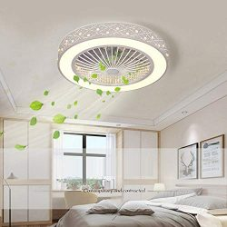 Ceiling Fans with Lights and Remote Control with 3 Acrylic Blades Invisible Ceiling Fans for Liv ...