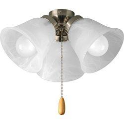 Progress Lighting P2642-09WB Fan Light Kit, Brushed Nickel